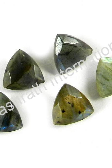 6mm Natural Labradorite Faceted Cut Trillion 10 Pieces Lot Gray Color Blue Power Calibrated Size Top Quality Loose Gemstone